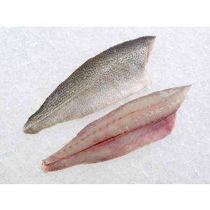 Fresh Weakfish/Sea Trout Fillets on Ice