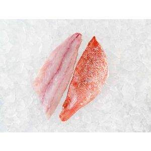 Fresh Vermilion Snapper Fillets on Ice