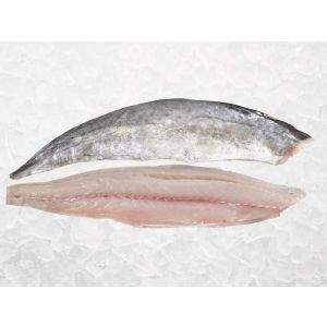 King Mackerel Fillets on Ice